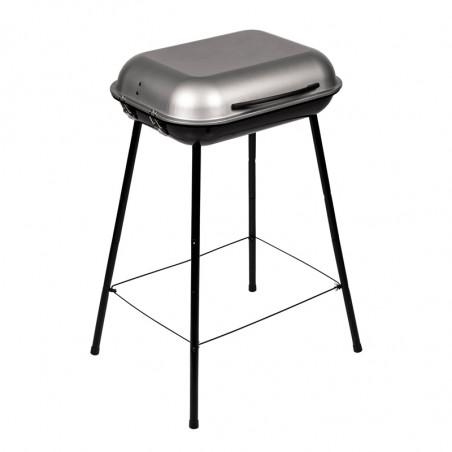 Barbecue charbon de bois avec couvercle de protection
